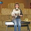 Topeka Cat Show 2014 Gunsmoke 039