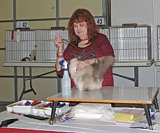 Beverly Wood judges birmans 035