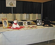 Topeka Cat Show 2014 Gunsmoke 003