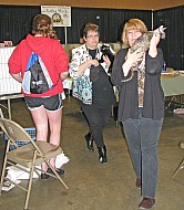 Topeka Cat Show 2014 Gunsmoke 026
