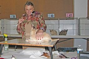 Jan Rogers judges kittens 037